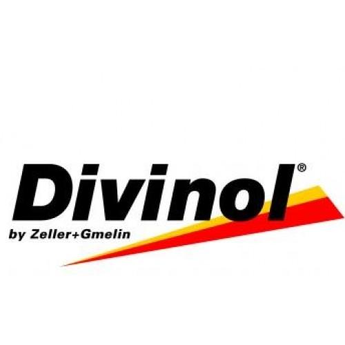 divinol%201-500x500.JPG
